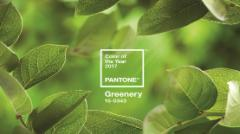 Pantone® Color of the Year