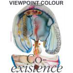 Viewpoint Colour #10