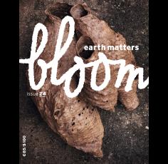 Bloom # 24