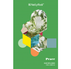 Nelly Rodi Color Intelligence SPRING-SUMMER 2023