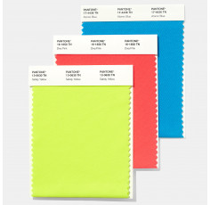 TN Nylon Bright Swatch (10 x 20 cm)