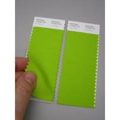 Pantone® TCX Swatch 2 stripes (2 x 5 x 20 cm)