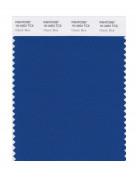 Pantone® TCX SWATCH  (10 x 20 cm)