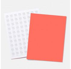 NEW - TPG Sheet A4