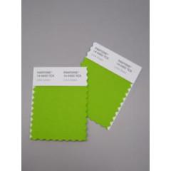 Pantone® TCX Swatch Mini Cards (2 stuks, 5 x 10 cm)