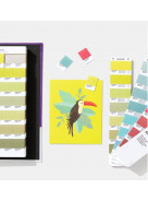 Pantone® Solid Color Set | Incl. 294 New Colors