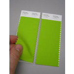 Pantone® TCX Swatch 2 stripes (2 x 5 x 20 cm)